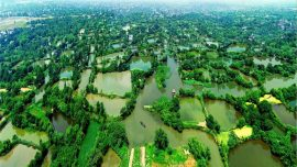 aerial shot of Xixi ntional wetland park