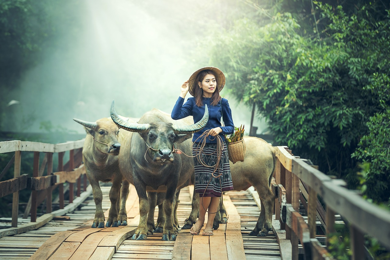 agriculture-expat-travelers