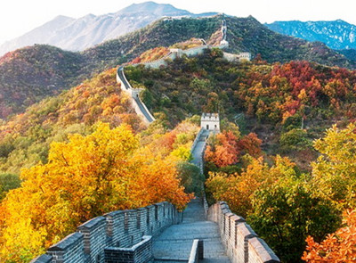 picture-of-great-wall-of-china-with-orange-trees